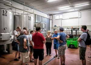 Tili Vini winemakers inside winery bulding with huge tanks