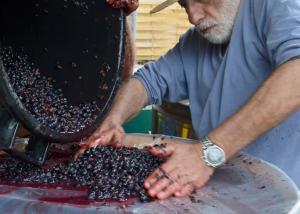 Château Les Remparts - winemaker