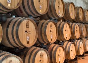 Long rows of wooden wine barrels in the cellar of La Collina dei Ciliegi winery.