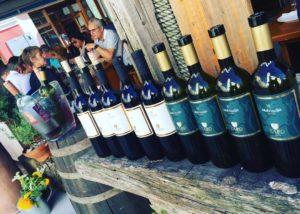 zaro wines different types of beautiful wine near winery in slovenia