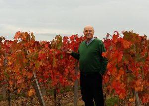 Owner in the vineyard at Château de Pressac in Bordeaux