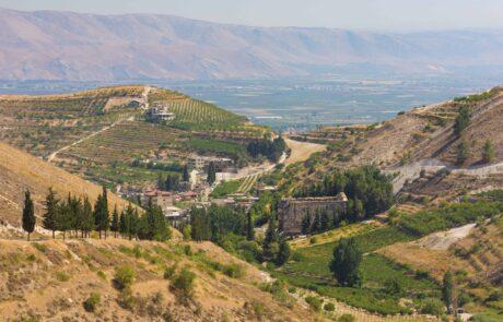 Bekaa Valley wine region