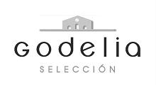 Logo of Bodegas Godelia