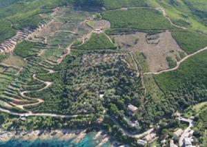 Aerial View of the Domaine Terra di Catoni Area
