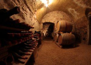 Wine barrels inside the AZ. AGR. TERRE DI PIETRA SAS winery
