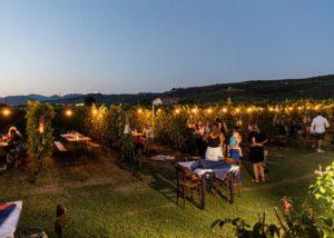 tasting at night at azienda agricola vicentini agostino winery