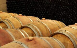 Oak barrels inside the Basilescu winery