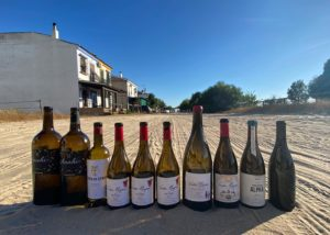 Bottles of wine by Bodegas javier san pedro ortega winery on sandy surface
