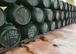 Bodegas Virgen de la Oliva barrels