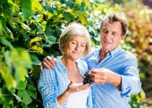 Couple in vineyard of the Brandy Creek Estate winery