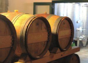 Wine barrels of the Bura Mrgudic winery