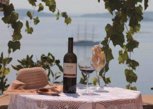 Wine tasting at Bura Mrgudic winery