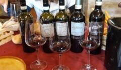 Wine tasting at the Cà de Lion Ghione dal 1871 winery