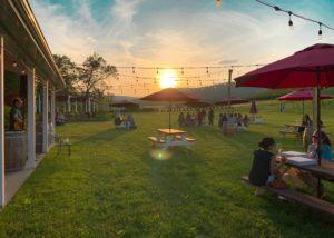 Outdoor music and sun at Catoctin breeze vineyard