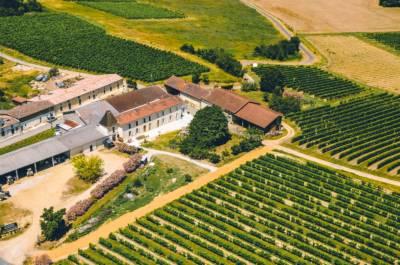 The view on the winery Chateau de Cranne © PIXXIES DESIGN