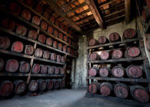 Wine barrel inside the cellar room of the CONTE GUICCIARDINI di Ferdinando Guicciardini - CASTELLO DI POPPIANO winery