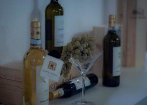Wine bottles of the Corte adami winery