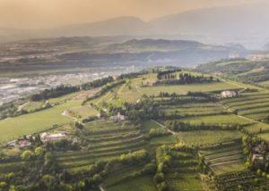 Nice view of the Corte Martini winery estate