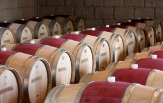 Wine barrels at CUNA DE TIERRA winery