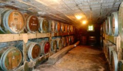 Barrel cellar at the Domaine BAUD - Génération 9 winery