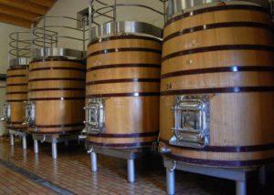 Wine barrels of the Domaine de la Charbonniere winery