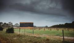 Beautiful vineyard at Domaine Naturaliste winery