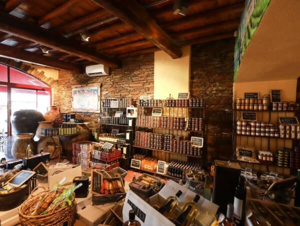 Wine shop at the DOMAINE TERRA di CATONI winery