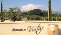 Entrance at DOMAINE VINTUR winery