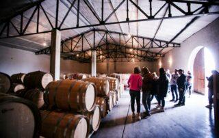 Cellar tour at Et Cetera winery
