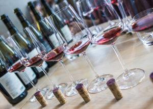 Glasses of wines kept for wine tasting at Etyeki Kúria Winery