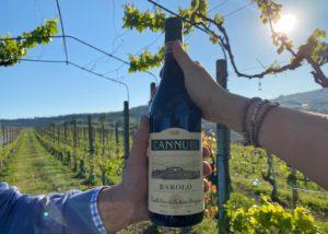 Wine in the vineyard of the Fratelli serio & battista borgogno winery