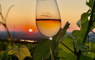 Breath-taking view of the wine glass with the sunset view of the Hilltop Borhotel és Étterem winery
