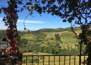 Beautiful view from Hiša Štekar winery