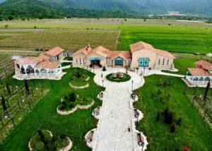 View of the Javakhishvilebis Marani winery