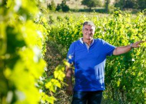 Winemaker in vineyard of the KROLO WINERY