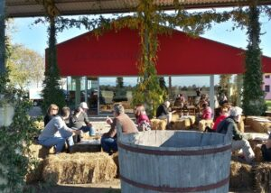 Tasting at La Frassina winery