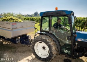 Tractor in the vineyard of la tunella winery