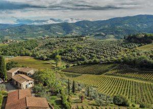 View of the Le Fonti - Panzano winery estate