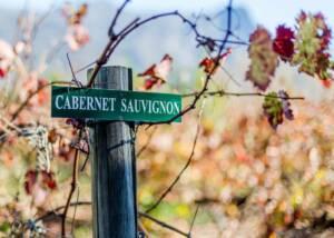 A sign board at the vineyard of le manoir de brendel