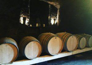 Cellar room of M-enostavno dobra vina winery