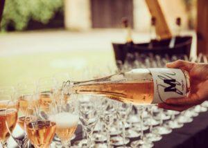 Wine tasting at M-enostavno dobra vina winery