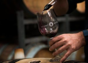 Wine tasting inside the cellar room of Mount Avoca Winery