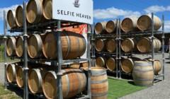 Wine barrels kept outside the building of Palliser Estate Wines winery