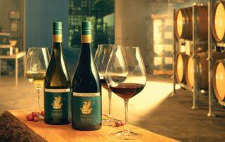Wine tasting at Palliser Estate Wines winery
