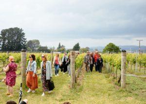 Vineyard tour at Palliser Estate Wines winery