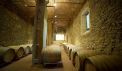 Cellar room of the poggio nibbiale winery