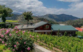 Garden around the SANTA IRENE winery