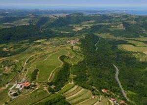 Beautiful wine estate view of Santomas Winery