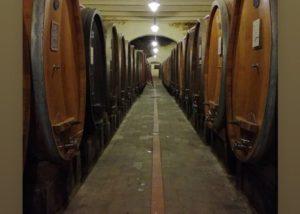 Cellar room of the Tenuta di Capezzana winery