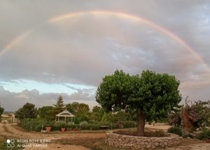 Rainbow view from the tenuta patruno perniola winery